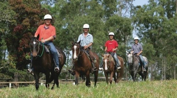 Cairns Horse riding tour