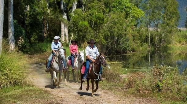 Horseriding and Quad Bikes