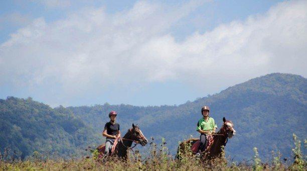 mountain horse riding Cairns North Queensland  Australia