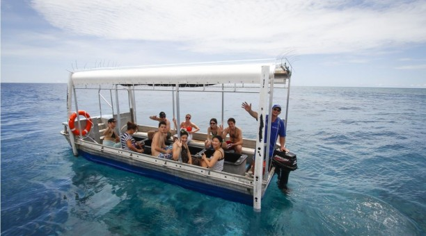 Glass bottom boat tour