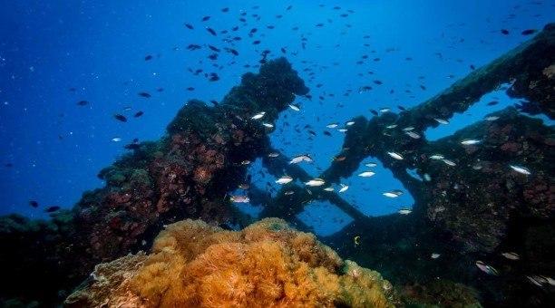 SS Yongala Ship Wreck Queensland Australia