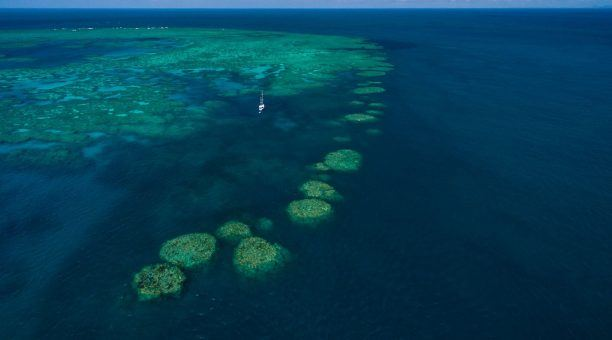 With moorings nestled in the lagoon, you will have sheltered places to snorkel and dive.