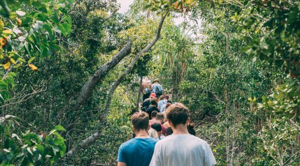 Follow your guide on the many Nature Walks